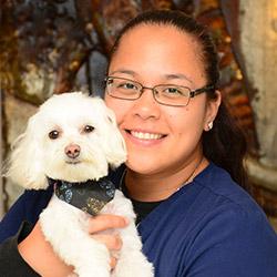 Norwalk Animal Receptionist