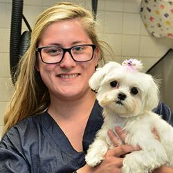 Norwalk Animal Hospital Groomer