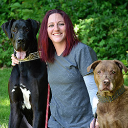 Norwalk Animal Care Specialist