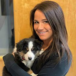 Norwalk Animal Hospital Receptionist