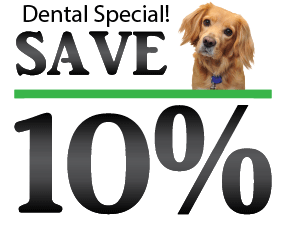 Norwalk Animal Hospital discount