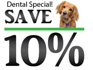 Norwalk Animal Hospital discount
